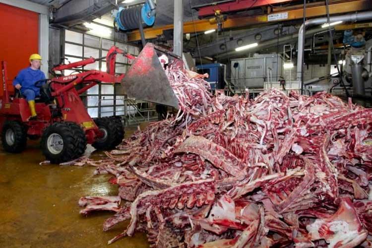 Los subproductos animales y vegetales